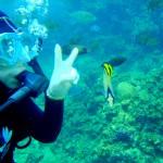 めんそーれOKINAWA!!青い海に囲まれた身近なリゾート「沖縄」