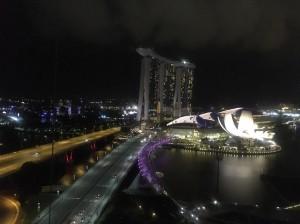 シンガポール新婚旅行_7869