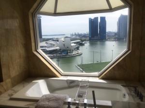 シンガポール新婚旅行_8311