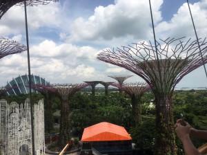 シンガポール新婚旅行_7225
